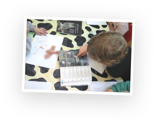 An example of indoor learning